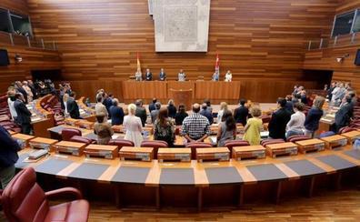 Las nuevas Cortes contarán con 49 caras nuevas entre ellas 10 de Cs, Vox y 'Por Ávila'