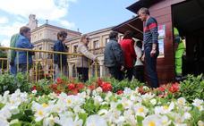 León «no tiene contaminación atmosférica» y el Ayuntamiento lo celebra regalando plantas para seguir cuidando el medio ambiente