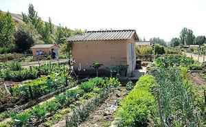 El miércoles comienza el curso de agricultura ecológica de la ULE en pequeños huertos