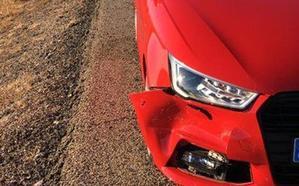 Un vehículo choca y acaba con la vida de un corzo en el acceso a León por la carretera de Asturias