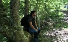 Los árboles singulares de la Montaña Oriental Leonesa llegan al MSM