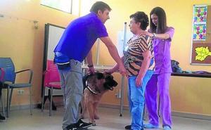 Terapia con perros para los enfermos de alzheimer