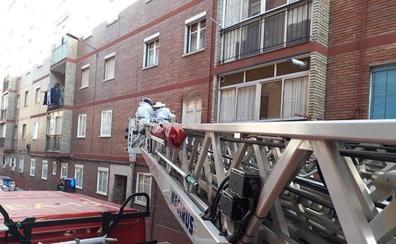 Los bomberos retiran un panal de abejas en Valladolid