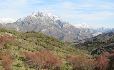 El Alto Bernesga, vida y naturaleza en estado puro