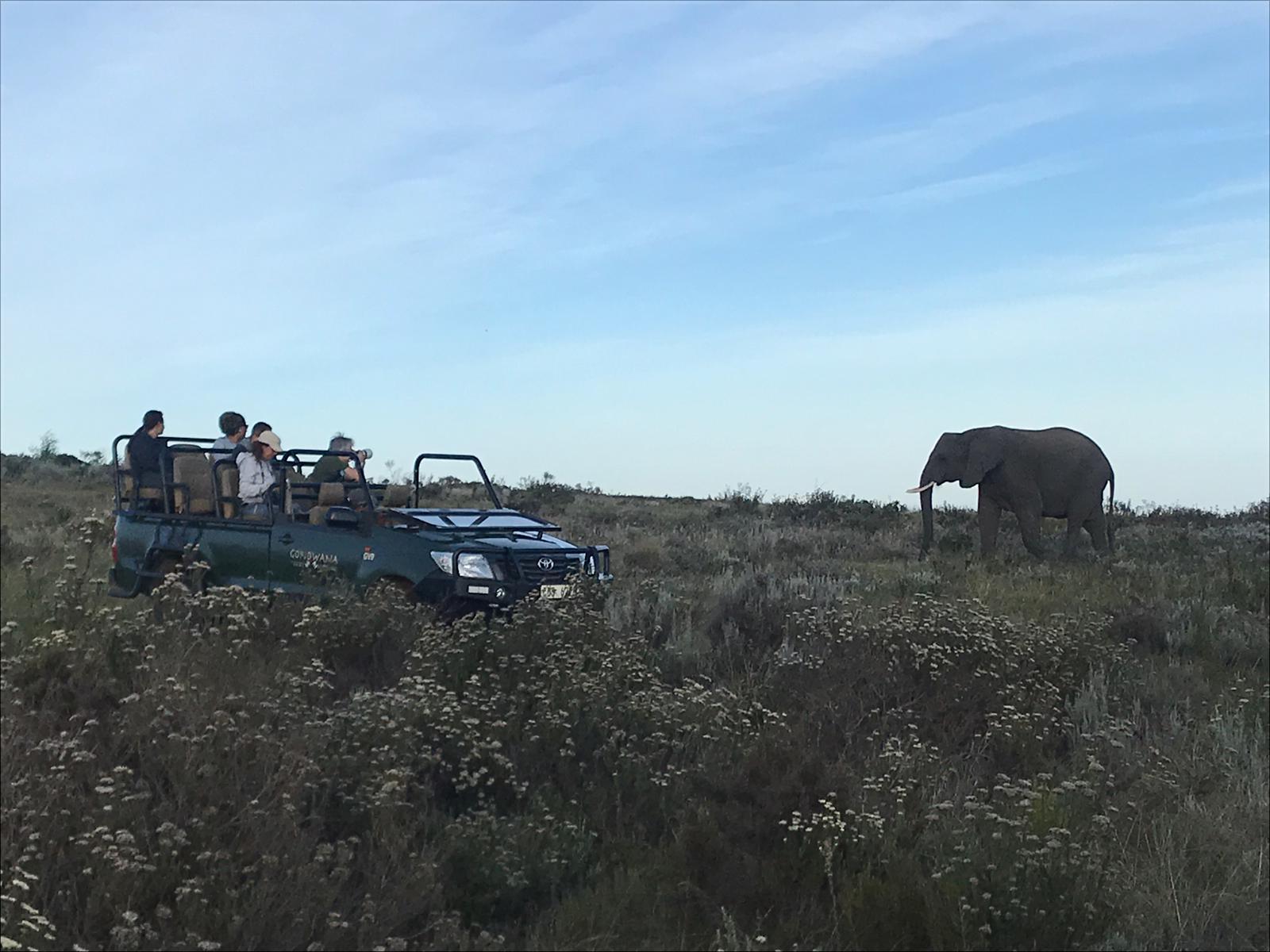 Desde León a Sudáfrica: el viaje de tu vida