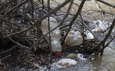 Concienciar sobre el abandono de residuos también en verano