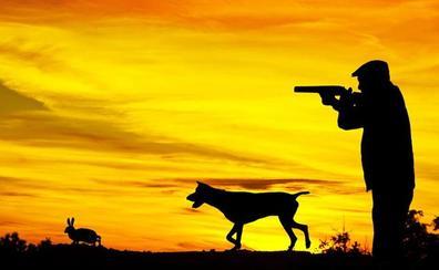 El TSJCyL desautoriza a la Junta y mantiene la suspensión cautelar de la caza en Castilla y León