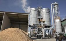 León lidera la biomasa: la provincia suma 7.605 equipos y ve crecer el empleo un 13,4%