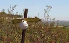 La Junta adaptará este verano la señalización del Camino de Santiago Francés a las directrices del Consejo Jacobeo