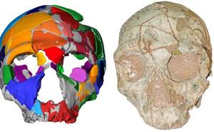 El hombre moderno llegó a Europa desde África 150.000 años antes de lo que se pensaba