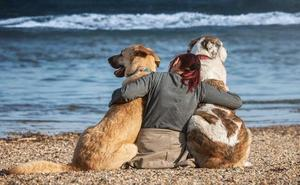 Las playas caninas de los leoneses