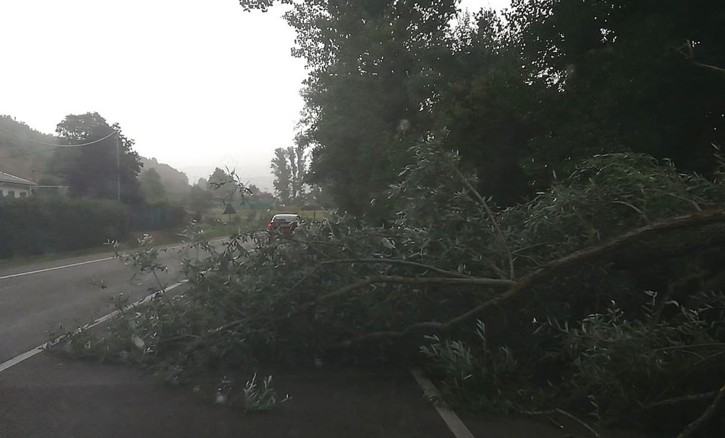 Estalla la tormenta en León