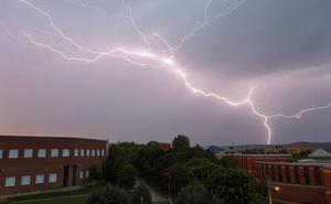 De árboles caídos a cortes de luz: la tormenta causa estragos en toda la provincia de León
