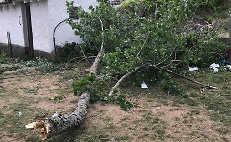 Destrozos provocados por un fuerte vendaval en Montuerto