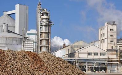 Azucarera niega un acuerdo con Acor y reitera que la continuidad de la planta de La Bañeza «está totalmente garantiza»