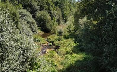 Valderrey reclama a la CHD la limpieza del río Tuerto