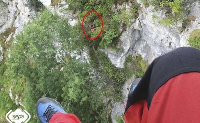 Rescatan ileso a un montañero que se despeñó treinta metros cuando hacía la ruta del Cares