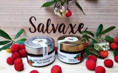La miel berciana 'Salvaxe' recibe cinco estrellas en los considerados como Oscar de la gastronomía a nivel mundial