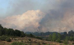 Controlado y en perimetración el incendio que cortó la N-630 en Sariegos este domingo