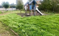 El PP de San Andrés denuncia el abandono que sufre el parque de 'El Soto'