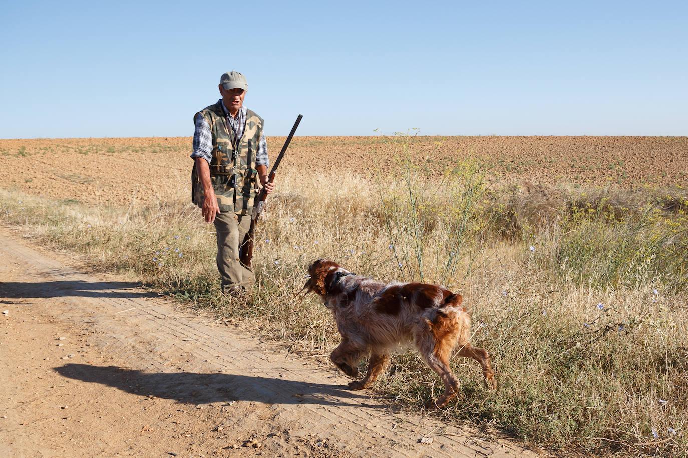 Inicio de la media veda de caza en Castilla y León
