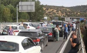 Cortada la A-62 en sentido Burgos por una colisión entre un camión de cerdos y un bus en Cordovilla la Real