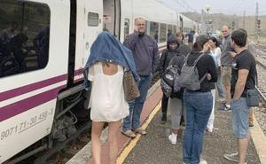 El humo de un tren de mercancías obliga a detener y ventilar un Alvia en León
