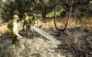 Se reduce un 60% la superficie arbolada calcinada por incendios en 2019 en Castilla y León en relación al último decenio