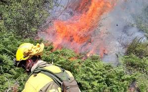 CCOO exige a la Junta una política forestal «más comprometida» para atajar el problema de los incendios
