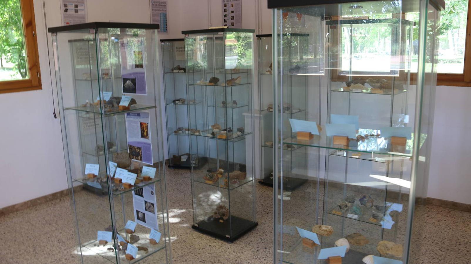 Un 'tesoro' único de minerales y fósiles