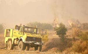 Los cortafuegos y el sacrificio de un área arbolada para salvar un pinar de 3.000 hectáreas