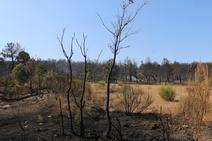 Los restos del incendio de Villapadierna