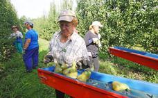 La Policía Municipal inicia la vigilancia de plantaciones de frutales de Ponferrada