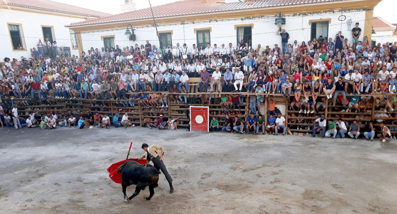 El leonés Javier Castaño y el arte del toreo en Barrancos