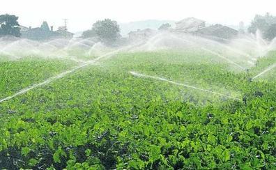 La Junta convoca las ayudas para el suministro de agua en explotaciones ganaderas afectadas por la sequía