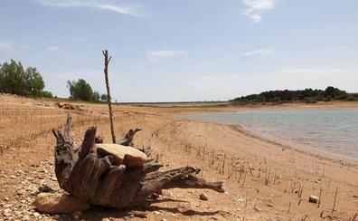 La Junta convoca ayudas para ganaderos por 2 millones de euros para combatir la sequía