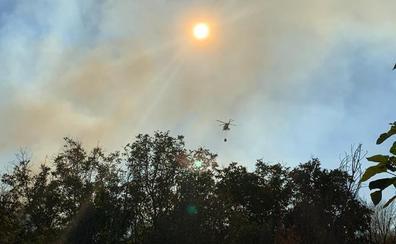 Un incendio en los alrededores de Santa Olaja de la Ribera causa la alarma en la tarde del jueves
