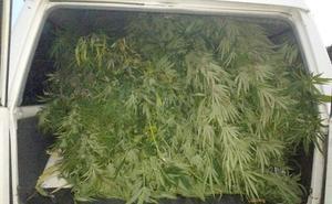 Detenido un hombre en Ponferrada tras detectar sus vecinos un fuerte olor a marihuana