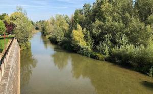 Ciudadanos reclama la limpieza del cauce de los ríos Bernesga y Torío para prevenir inundaciones
