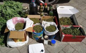 Dos detenidos en Cacabelos por la posesión de un punto de cultivo de marihuana con nueve plantas