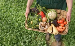 La Cámara de Comercio pone en marcha un programa formativo sobre agricultura sostenible