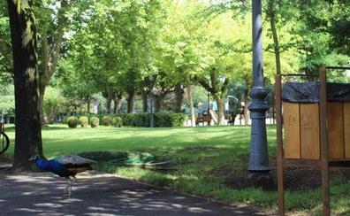 Franco lamenta que el PSOE haya ocultado el reconocimiento internacional al Parque de Quevedo