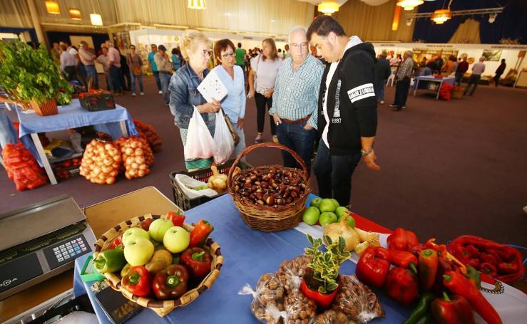 El consejero de Agricultura asiste a la IX Feria del Pimiento de El Bierzo