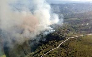 Medios aéreos y terrestres intentan controlar un fuego que afecta a una zona de pino repoblado en Langre