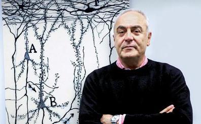 El neurocientífico Javier de Felipe presentará este martes en Léon el innovador proyecto de mapeo del cerebro «Cajal Blue Brain»
