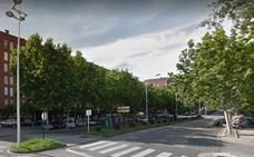 El Ayuntamiento pide la colaboración ciudadana para facilitar la poda de los plátanos de sombra