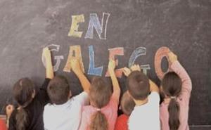 Fala Ceibe lamenta que el Consejo Comarcal del Bierzo «ignore a la lengua gallega en su web»