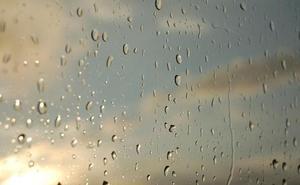 La lluvia obliga a aplazar la Ruta por la Calidad dedicada al viñedo en el Bierzo