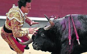 El novio torero de Victoria Federida, grave por una cogida