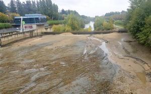 El mantenimiento del azud 'seca' el río Bernesga a la altura del puente de los Leones
